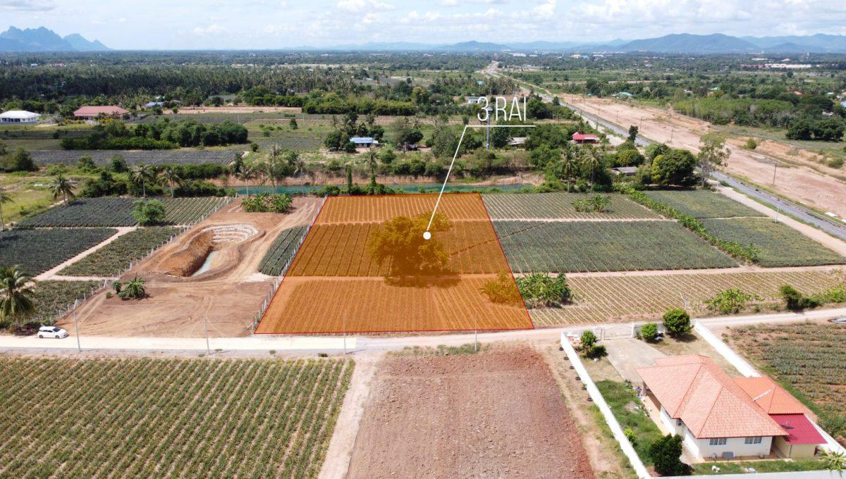 3 Rai Pranburi_๒๐๐๙๒๗_1