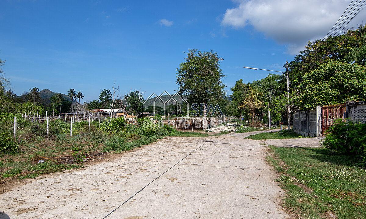 Land-Borfai-By-SPM-Property-Huahin