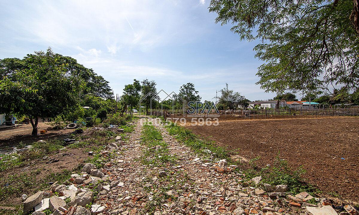 Land-Borfai-By-SPM-Property-Huahin-4